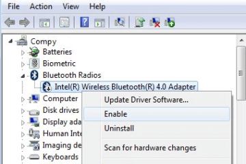 Bluetooth Mouse Not Working on Windows 10