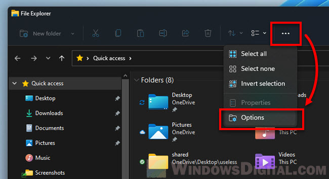 How to open Folder Options on Windows 11