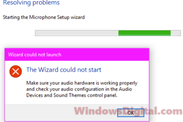 The Wizard Could Not Start Microphone in Windows 10